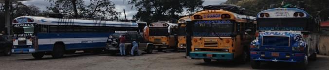 bus205