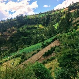 Farmland surrounding Las Lajas Sanctuary