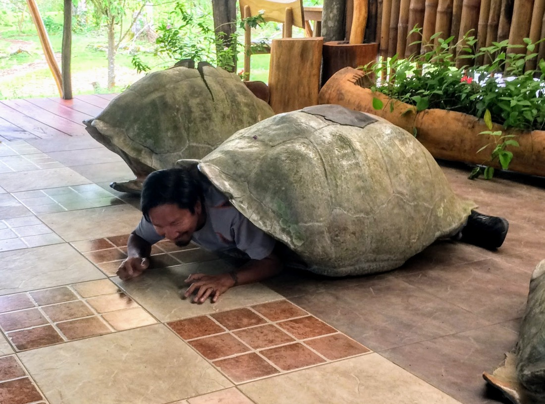 Trin in the tortoise shell in Galapagos